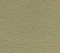 lamborghini beige myron