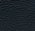 lamborghini blu delphinus