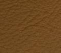 lamborghini cuoio olympus