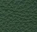 lamborghini verde sagittario