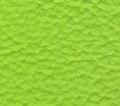 lamborghini verde ulysses