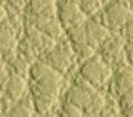 landrover parchment